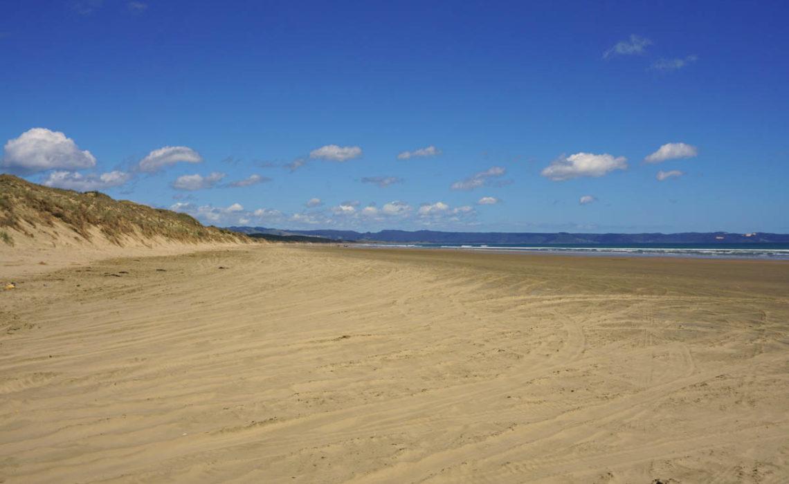 Neuseeland Nordinsel 2